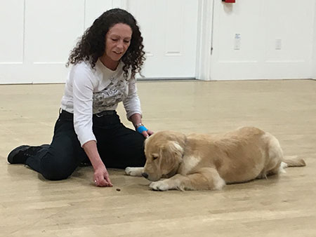 Laura teaching in golden retriever to leave the treat alone.