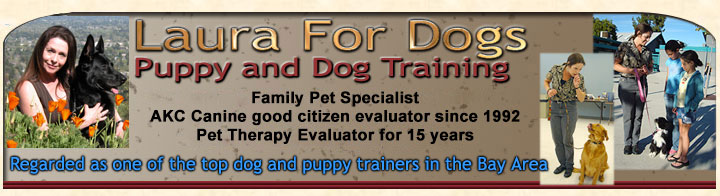 Laura For Dogs - Puppy and Dog Training